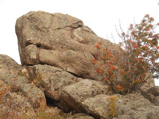 Khối đá hình rồng trên núi Mokhnataya.