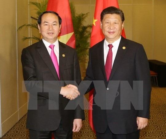 Chủ tịch nước Trần Đại Quang và Tổng Bí thư, Chủ tịch Tập Cận Bình hội đàm sáng 13/11 (ảnh minh họa: TTXVN)