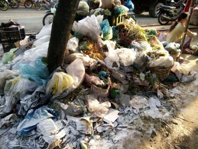 """Sóc Trăng: Dân khốn khổ vì bãi rác """"ngâm tôm"""" không được xử lý - 1"""