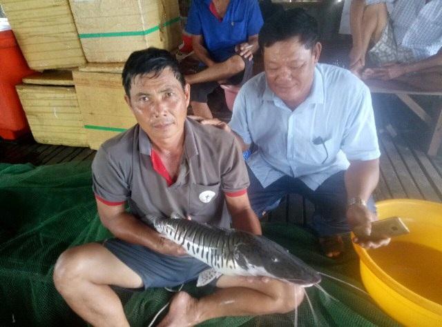 Thấy con cá lạ, thời gian gần đây có nhiều người đến nhà ông Bon để xem