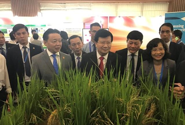 Phó Thủ tướng Trịnh Đình Dũng cùng đại biểu tham dự triển lãm APEC