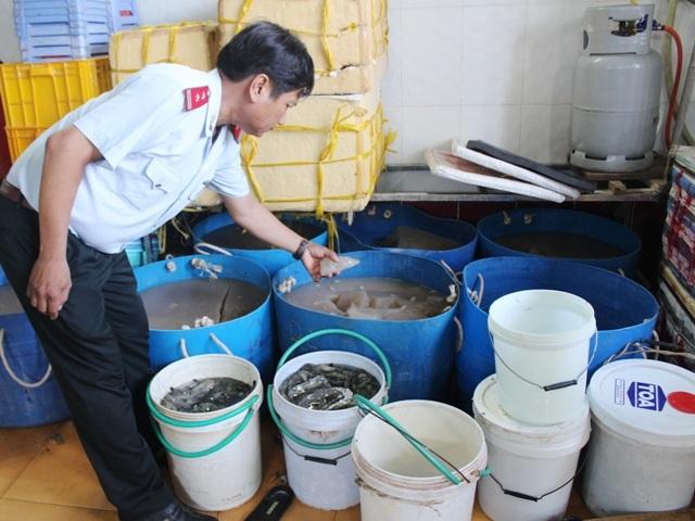 Ông Hà Văn Buôl - Chánh Thanh tra Sở NN&PTNT tỉnh Bạc Liêu đang kiểm tra số tạp chất được bơm vào tôm.