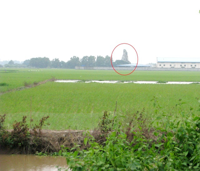 Biệt phủ nằm giữa đồng ruộng ở xã Châu Hưng A, huyện Vĩnh Lợi (tỉnh Bạc Liêu) nhìn từ xa nổi bật với một ngọn núi nhân tạo.