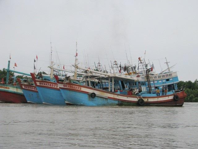 Nhiều tàu thuyền đã vào neo đậu an toàn.