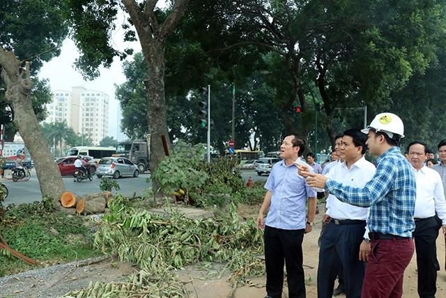 Ông Nguyễn Đức Chung - Chủ tịch UBND TP Hà Nội cùng đơn vị thi công xem xét quá trình đánh chuyển hàng cây trên đường Phạm Văn Đồng