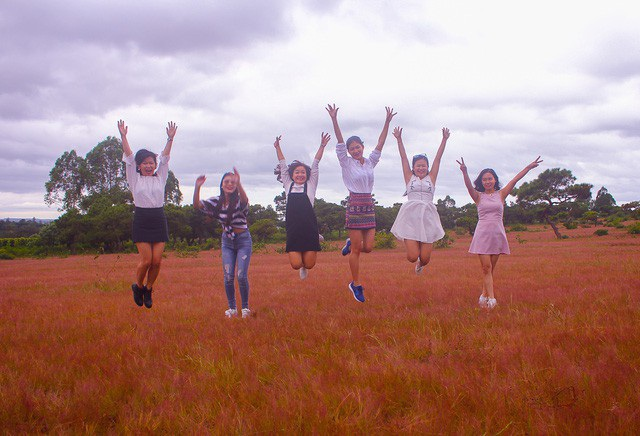 Đồi cỏ hồng đã hấp dẫn những bạn trẻ đến để một lần được ngắm đồi cỏ chuyển sắc. Ảnh: Phạm Hoàng