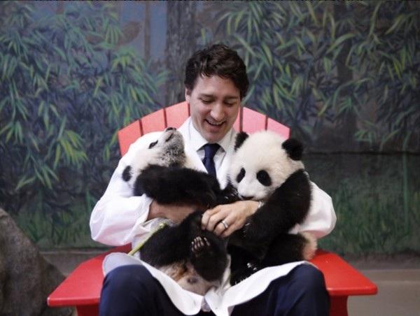 """Justin Trudeau đã """"gây sốt"""" trong quá trình tranh cử với hình ảnh trẻ trung và thân thiện"""