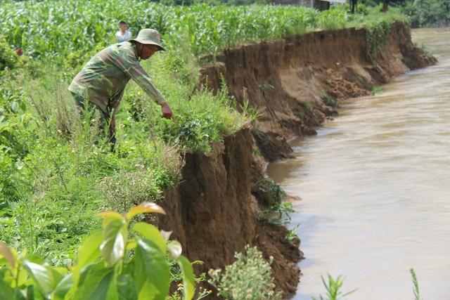 Theo UBND xã Nâm N'Đir nguyên nhân là do việc khai thác kiểu tận thu cát trên sông.