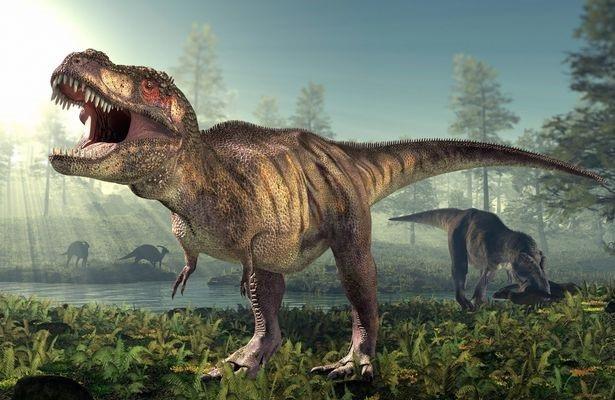 Hai chi trước nhỏ xíu của T-rex có lẽ không vô dụng như chúng ta vẫn nghĩ - 2