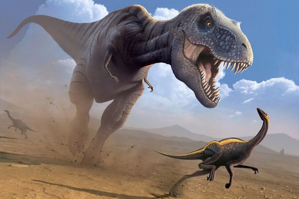 Hai chi trước nhỏ xíu của T-rex có lẽ không vô dụng như chúng ta vẫn nghĩ - 1