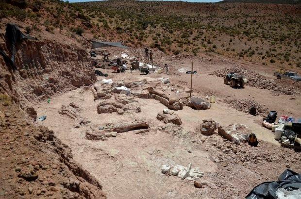 """Loài khủng long mới được phát hiện là """"sinh vật lớn nhất từng đi lại trên Trái Đất"""" - 2"""