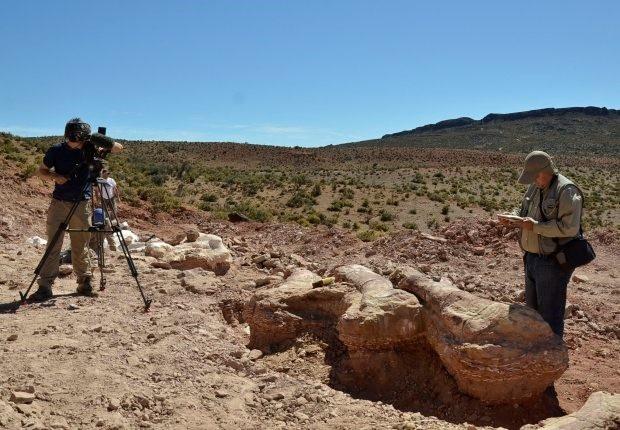 Ảnh chụp nơi phát hiện các mảnh xương hóa thạch của sáu con khủng long trưởng thành trẻ tuổi.