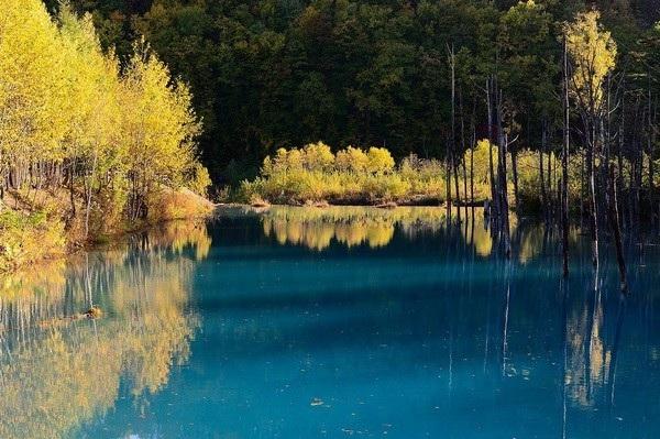 Khung cảnh hồ Xanh khi tiết trời vào hạ.