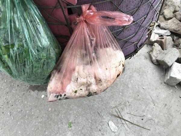 Những túi cơm thừa, canh cặn tưởng chừng chẳng đáng gì lại có thể đem về nguồn thu lớn