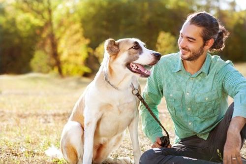 Chó là loài được con người nuôi nhiều nhất và cũng gần gũi với chủ nhân nhất.