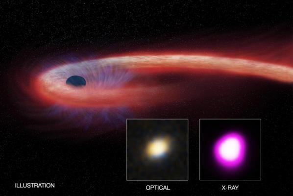 Hình ảnh mô phỏng cho thấy một lỗ đen đang tiêu thụ vật chất của một ngôi sao trong quá trình gián đoạn thủy triều. Hình ảnh góc dưới bên phải cho thấy XJ1500+0154 khi được quan sát bằng kính viễn vọng quang học và tia X.