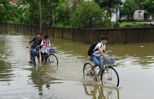 6 điểm trường ngoài đê Tả Lam thuộc huyện Hưng Nguyên phải cho học sinh nghỉ học tránh lũ