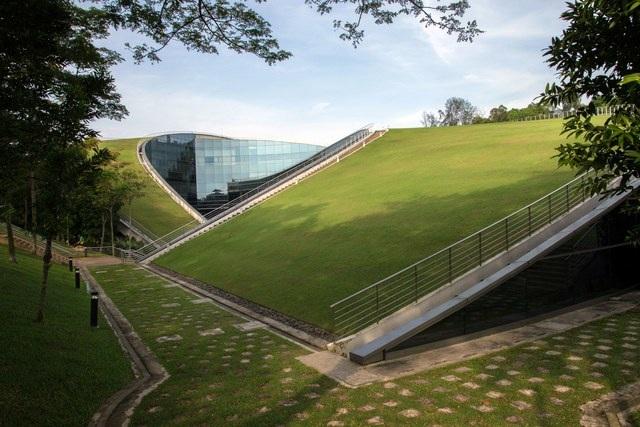 """Đúng với tính chất của mình, khoa mỹ thuật và thiết kế thuộc trường đại học công nghệ Nanyang, Singapore sở hữu khu giảng đường """"có một không hai"""" với 3 khu nhà liên kết với nhau bởi phần mái lượn sóng đẹp mắt được phủ xanh bằng thảm cỏ."""