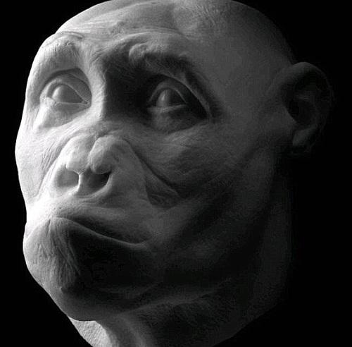 Đồ họa về khuôn mặt của người tiền sử Sahelanthropus có mặt trên Trái Đất từ 7 triệu năm trước, được phát hiện hóa thạch tại Chad.