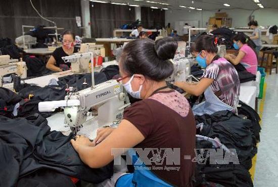 Sản xuất hàng may mặc xuất khẩu tại Công ty May Đồng Nai (thành phố Biên Hòa, Đồng Nai). Ảnh: Danh Lam/TTXVN