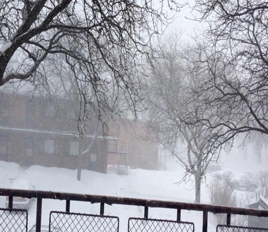 Tết Đinh Dậu giữa mùa tuyết rơi của DHS Việt tại bang Michigan, Hoa Kỳ - 13