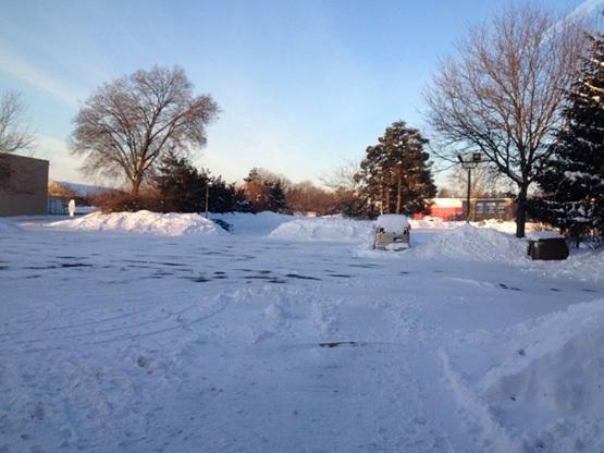 Tết Đinh Dậu giữa mùa tuyết rơi của DHS Việt tại bang Michigan, Hoa Kỳ - 14