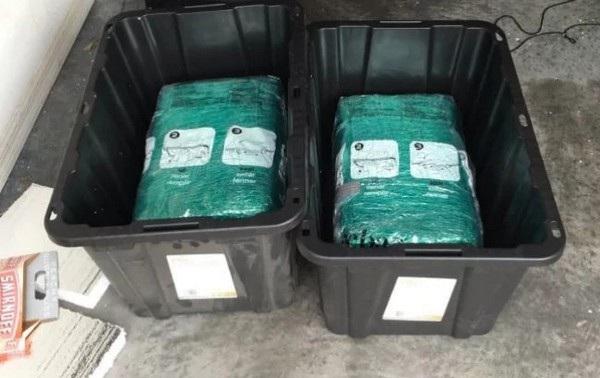Những gói cần sa nặng hơn 29kg được đặt trong những thùng nhựa mà cặp đôi đã đặt mua trên Amazon