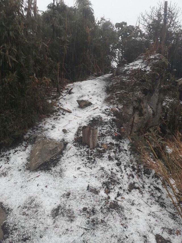 Theo thông tin của Đài khí tượng thủy văn tỉnh Lào Cai vào hồi 16h15 ngày 3/2 một trận mưa đá đã bất ngờ xảy ra, phủ trắng khu vực quanh đỉnh núi Fansipan (Sa Pa). (Ảnh: Phạm Ngọc Triển)