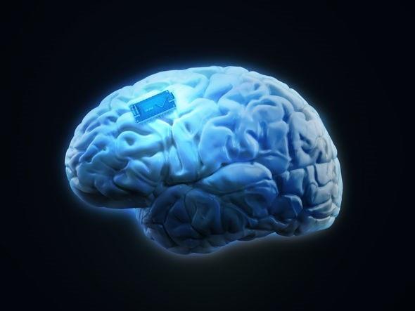 Các con chíp dùng cho bộ não của chúng ta sẽ sẵn sàng trong vòng 15 năm nữa.