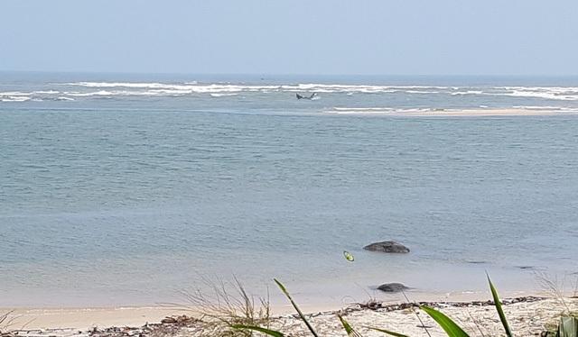 Cửa biển Tư Hiền vẫn ách tắc dù được Công ty 55 nạo vét vượt quá hàng trăm ngàn khối cát