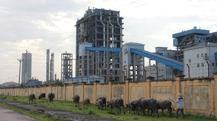 Tổng thầu EPC thực hiện dự án Nhà máy Đạm Ninh Bình là Tổng công ty Tư vấn và thầu khoán Hoàn Cầu (Trung Quốc).