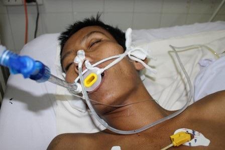 Sinh mạng của Thổ Lục đang rất nguy nan vì không đủ chi phí điều trị tốt nhất