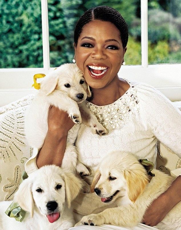 Oprah Winfrey: Tình yêu với những chú cún. Không gì sánh nổi.