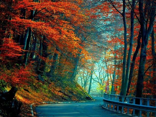 """Đẹp nhẹ nhàng và lãng mạn với bộ sưu tập hình nền """"những con đường"""" - 10 Đẹp nhẹ nhàng và lãng mạn với bộ sưu tập hình nền """"những con đường"""""""