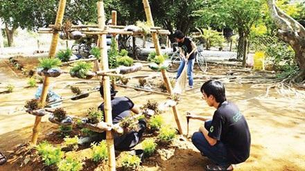 Đội sống xanh trồng cây xanh từ đồ tái chế.