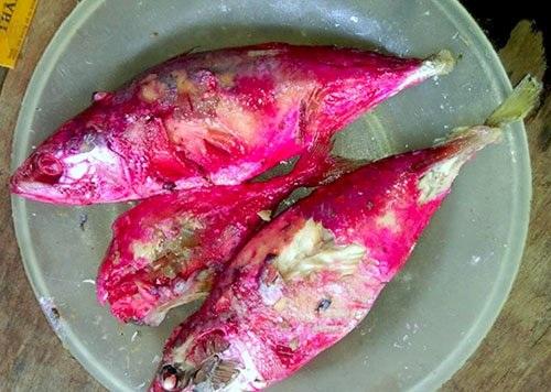 Cá kho đổi màu sau một đêm để tủ lạnh