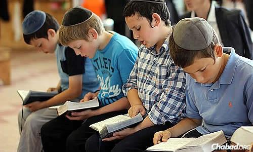 Những đứa trẻ Do Thái được gây dựng niềm yêu sách và dạy cách đọc sách một cách khoa học từ khi còn rất nhỏ.