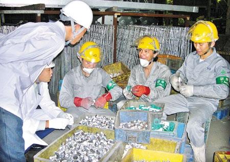Lao động Việt Nam đang làm việc tại Hàn Quốc