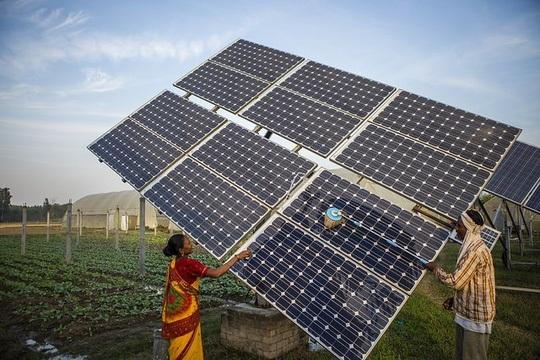Ấn Độ đang đẩy mạnh đầu tư vào năng lượng mặt trời Ảnh: FIRST GREEN