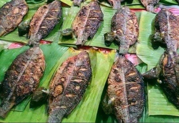 Các món ăn vịt quay, gà nướng hay cá nướng được vận chuyển mấy trăm cây số từ Tây Bắc về Hà Nội phục vụ giới sành ăn