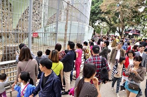 Ghi nhận tại Công viên Thủ Lệ nơi có lượng khách tham quan khá đông vào ngày mùng 3 Tết.