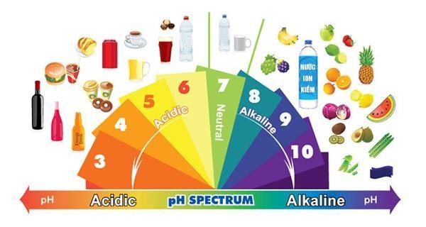 Bảng các thực phẩm tinhs kiềm và axit