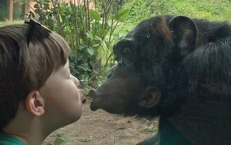 Màn hôn môi ngộ nghĩnh của tinh tinh và Nolan