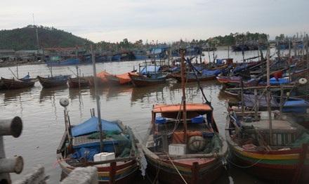 Tàu thuyền đánh cá trú ngụ tại cảng Lạch Quèn.