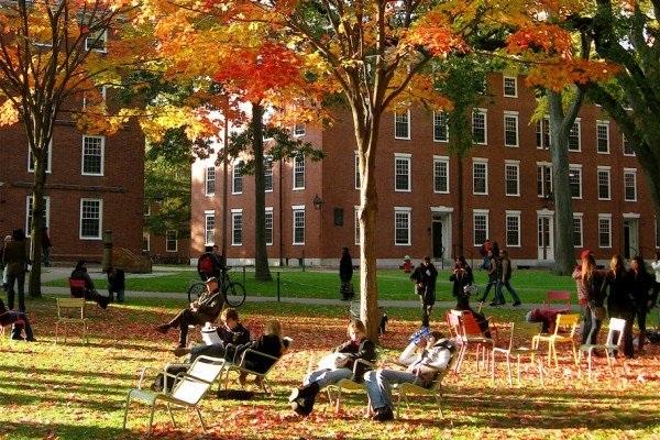 """Harvard bị tố là """"kì thị"""" khi tuyển đa số sinh viên không phải người da trắng trong năm 2016 và 2017."""