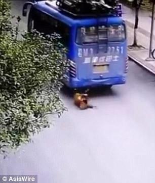 Cậu bé bị cuốn vào gầm xe buýt