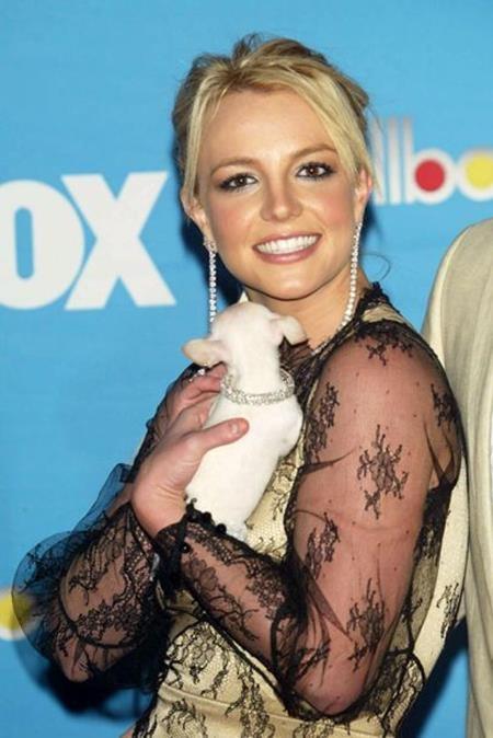 Sau khi lấy chồng, Britney Spears lại ghi điểm với gu thời trang thanh lịch