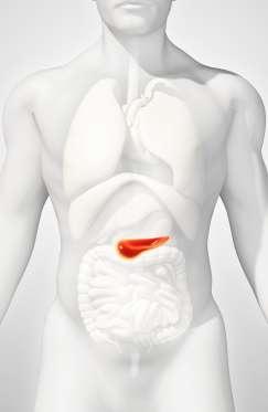 13 loại ung thư liên quan đến béo phì - 10