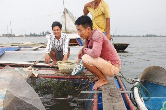 Với kiến thức học được cộng với sự nhanh nhẹn, chàng trai trẻ nuôi cá rất thành công. Tiếc thay, vì sự cố môi trường biển do Formosa gây ra nên không lời lãi được bao nhiêu.