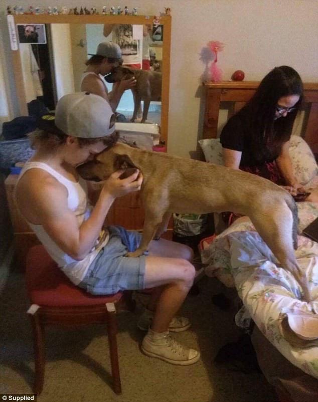 Cody áp mặt vào Simba khi Klemke ngồi gần đó